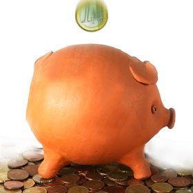 Just focus happiness for Secret piggy bank